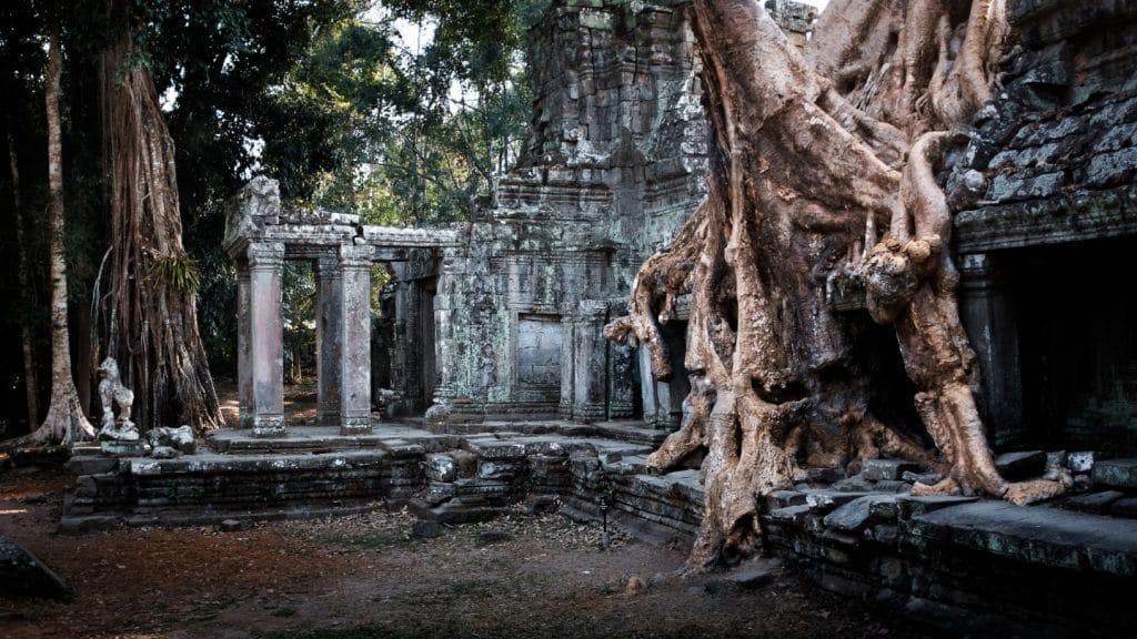 Visitar Templo de Ta Prohm en mayo