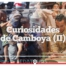 Curiosidades de Camboya II