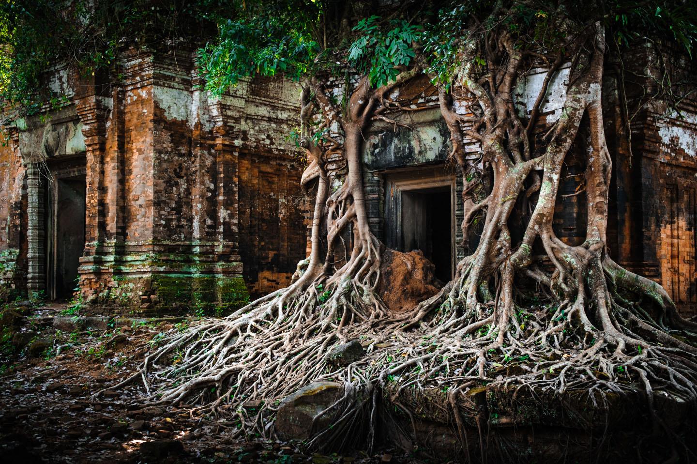 El Templo de Beng Mealea, en Angkor (Camboya)