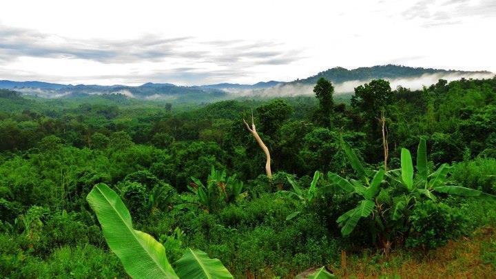 Parque Nacional Virachey Ratanakiri-Camboya