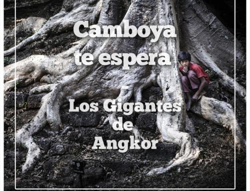 Los Gigantes de Angkor: La vida entre las piedras